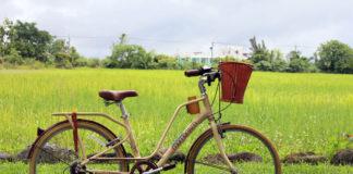 花蓮新光兆豐農場騎車